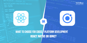 React Native Or Ionic